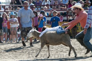 Goshen Stampede, Rodeo, Goshen Connecticut, cowboy, mutton busting
