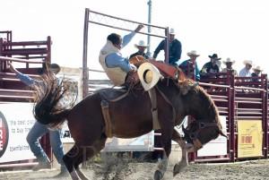 Goshen Stampede, Rodeo, Goshen Connecticut, cowboy, bronco riding, bronco busting, bareback