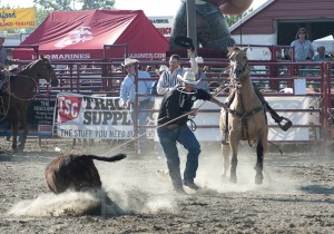 Goshen Stampede, Rodeo, Goshen Connecticut, cowboy, calf roping, calf tying